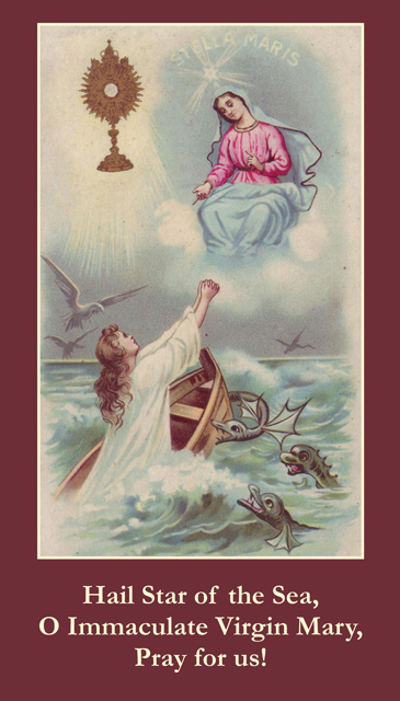 SEPTEMBER 27th: Our Lady Star of the Sea Prayer Cards***BUYONEGETONEFREE***