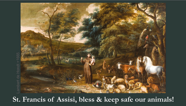 St. Francis Blessing of Animals Prayer Card