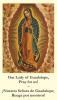 *BILINGUAL* Our Lady of Guadalupe Memorare Prayer Card (English/Spanish)