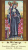 St. Walburga Prayer Card